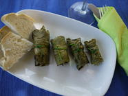 Curly Dock Dolmades